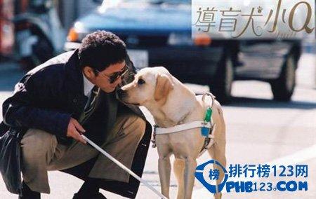 感人日本電影排行榜 感人日本電影推薦