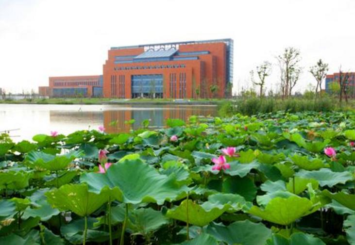 杭州有哪些好的大學?浙江杭州一本大學排名及分數線