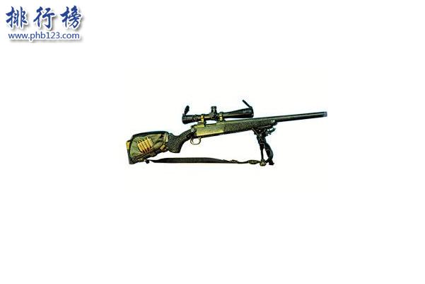 世界十大禁止狙擊槍