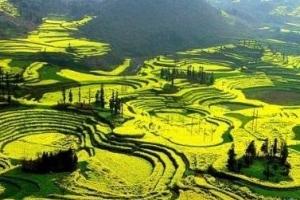 中國最大的自然花園獲金氏世界紀錄