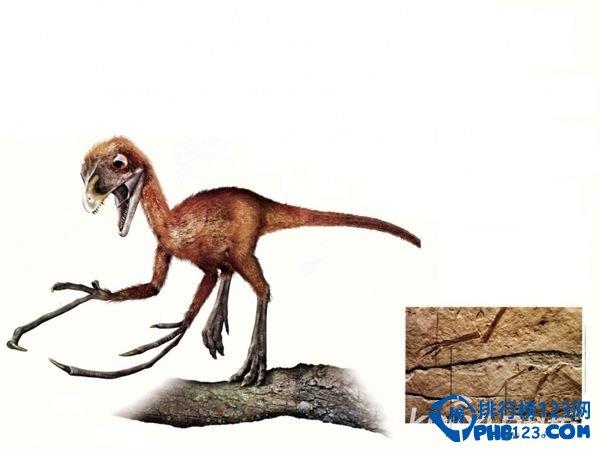 世界上最小的恐龍排行榜