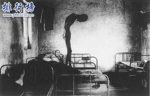 維基百科十大恐怖故事:迪斯尼的黑歷史和731部隊真相