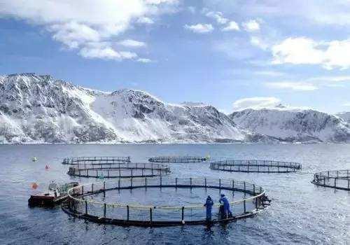 挪威超級漁場圖片