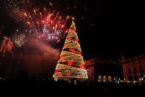 世界上最獨特的聖誕樹,最奇特的聖誕樹大全【圖】