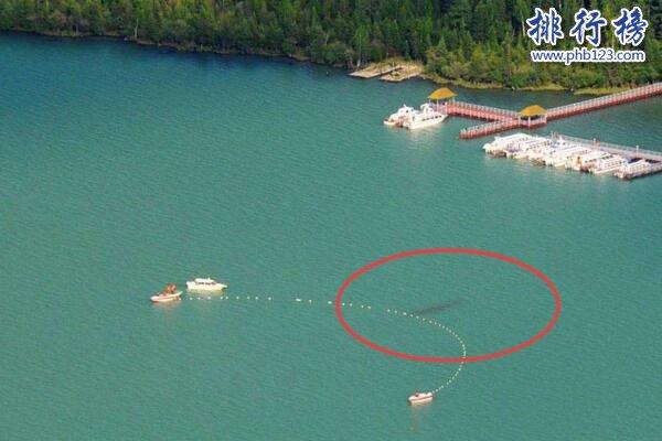 新疆喀納斯湖水怪之謎真相大白,疑似15米32噸的巨型哲羅鮭(視頻)