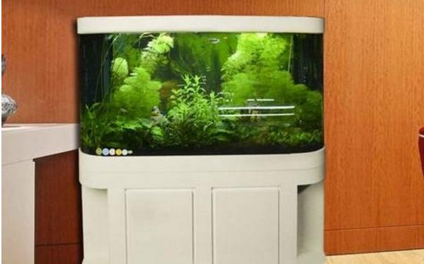 魚缸什麼牌子的好 中國十大魚缸品牌排名