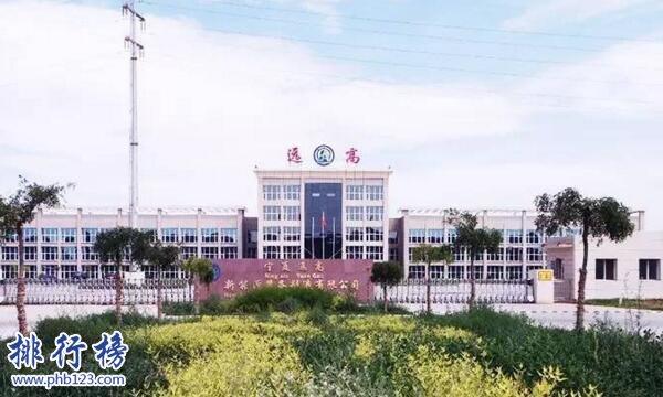 寧夏十大富豪排行榜2019:賈天將東菊鳳夫婦160億元居首