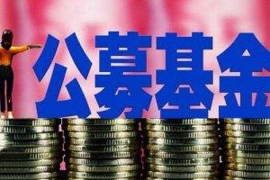 中國公募基金排行榜 中國公募基金公司排名是多少?