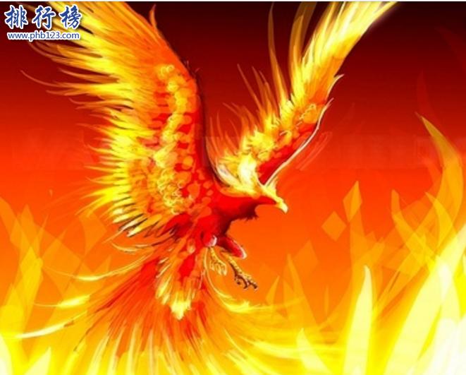 世界上最後一隻鳳凰