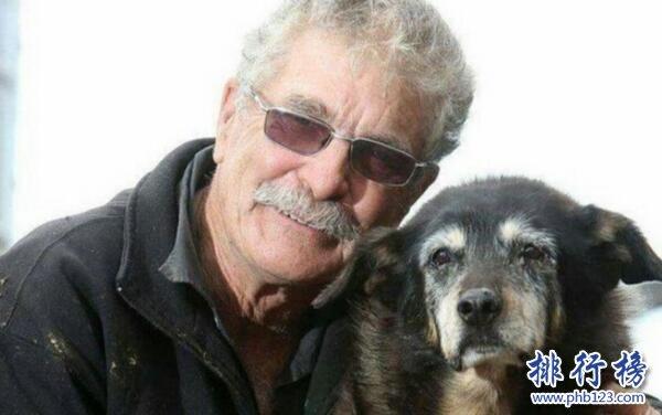 世界上壽命最長的狗:30歲,相當人類203歲