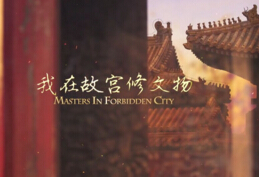 中國歷史紀錄片前十名排行榜,《我在故宮修文物》成年度最佳