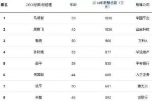 中國年薪最高的人