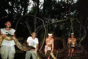 世界上最大的蟒蛇排行榜