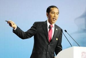印度尼西亞歷屆總統名單,印尼總統任期及權利(1945-2019)