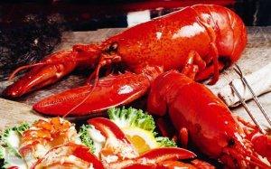 全球十大名貴海鮮排行榜 只有土豪才吃得起